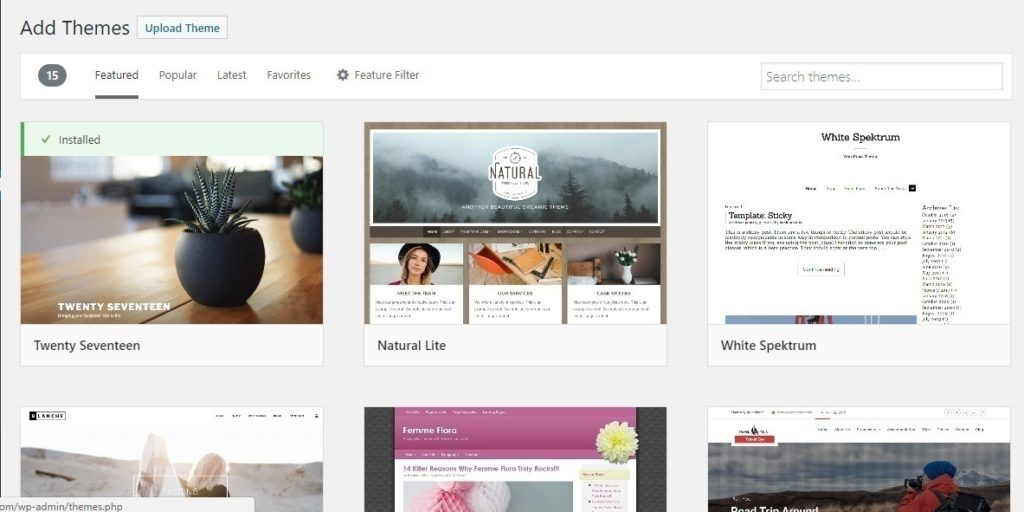 Start a fitness blog: WordPress install theme